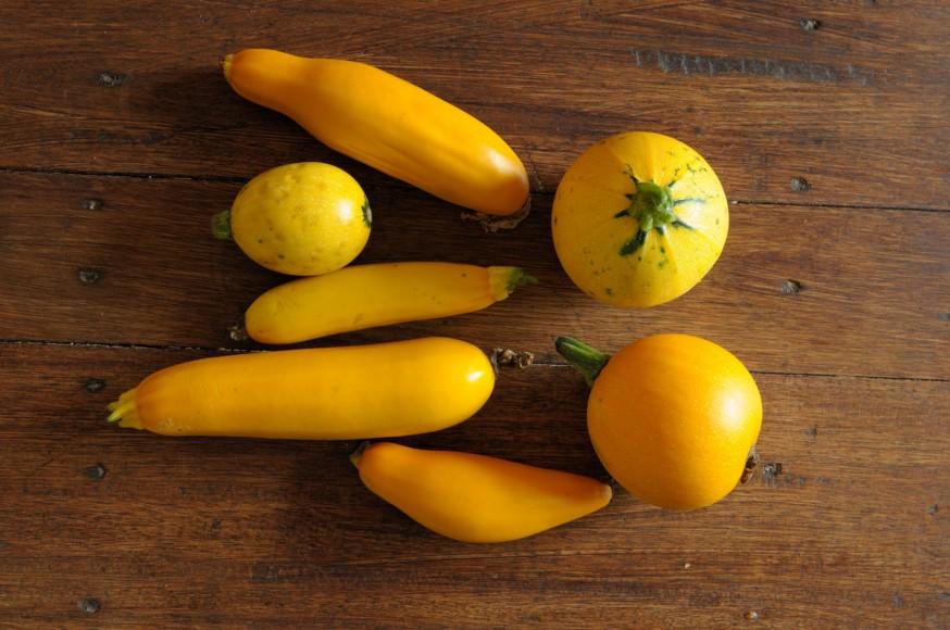 Jerica. Shariqua. Crema calabacin amarillo